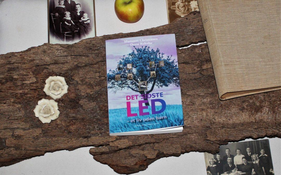 Det sidste led – Uprætentiøs bog fuld af refleksioner over livets store spørgsmål