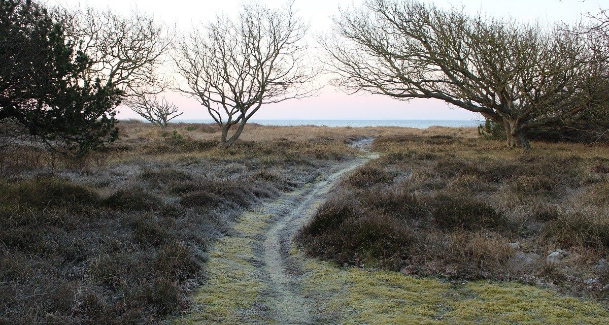 Writers Walk – Skriv på din gåtur
